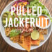 Cooking with jackfruit uses of jackfruit in the kitchen